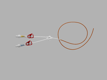 Cook Spectrum® Minocycline+Rifampin Impregnated Silicone Peripherally Inserted Central Venous Catheter